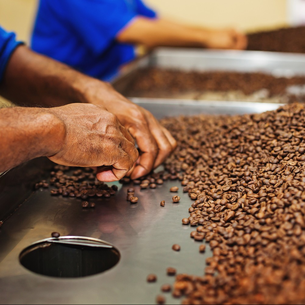Photo VVV - Coffee Beans Featured Image